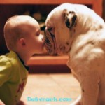 Характеристика аллергических реакций у детей