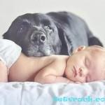 Синдром окклюзии у новорожденных (запор у новорожденных)